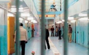 burgu rrogozhine