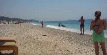 Fotolajm/ Në bregdetin tonë, bashkë me njeriun lahet në det edhe gomari
