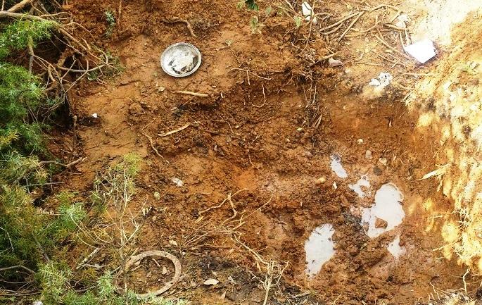 Identifikohet kufoma e vajzës 15 vjeçare të gjetur Shkumbin