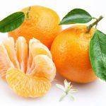 mandarina-propiedadesxl-668x400x80xX