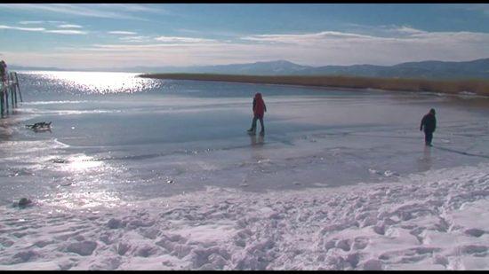 akull liqen