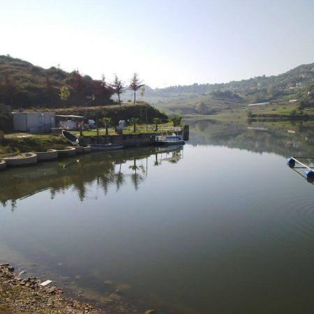 liqeni i kasharit