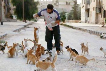 cat-man-aleppo-syria-11_1489857589-7864542